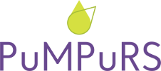 "Projekta ""PuMPuRS"" logo"