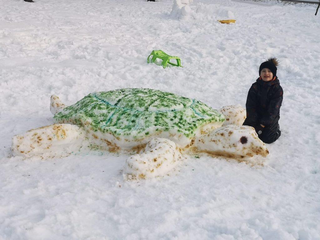 Zēns sēž sniegā blakus sniega bruņurupucim